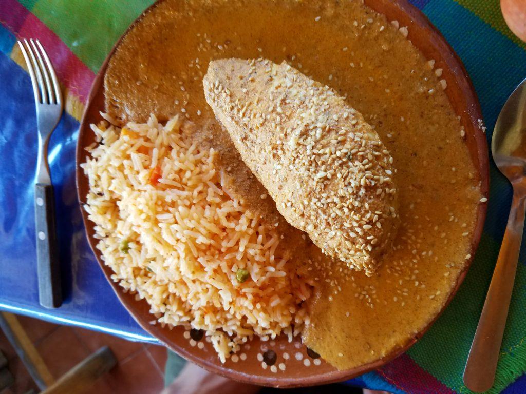 Mole Almendrado (Mexican Almond Based Mole Sauce) with Chicken