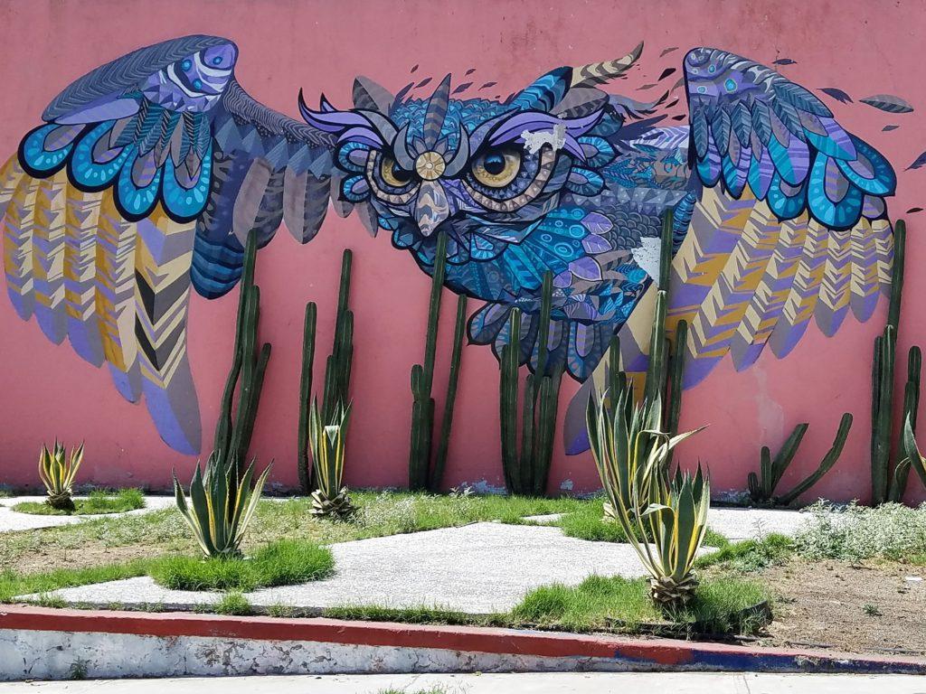 Street art of an owl in Queretaro, Mexico