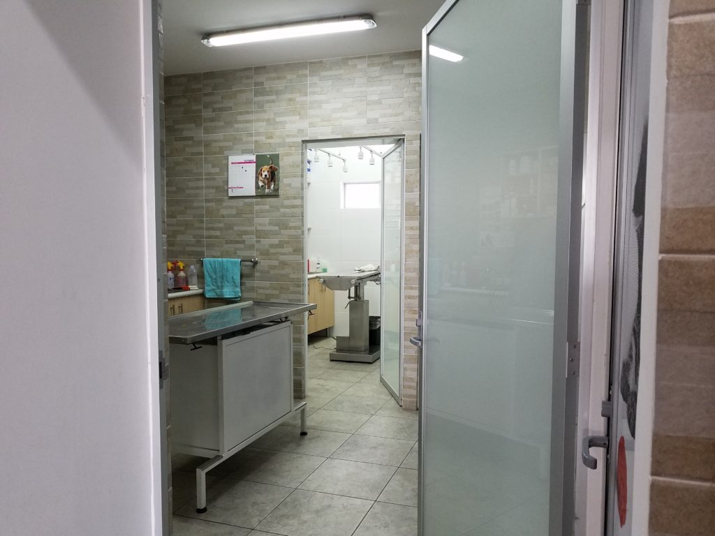 Veterinarian examination room.